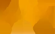 logo-jordi-feliu-or-reduit